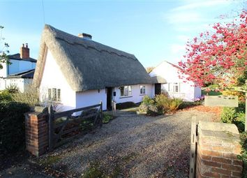 Thumbnail 2 bed cottage for sale in Cherry Tree Cottage, Park Lane, Langham, Colchester