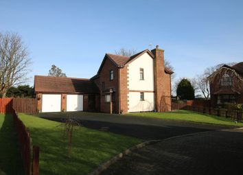 Thumbnail 4 bedroom detached house for sale in 12 The Willows, Ballasalla