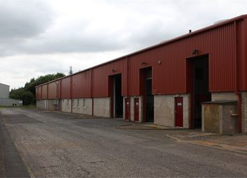 Thumbnail Commercial property to let in Pinnaclehill, Farm Estate, Kelso