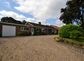 Thumbnail 4 bed detached bungalow for sale in Norwich Road, Clint Green, Yaxham
