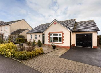 Thumbnail 3 bed bungalow for sale in West Park, Inverbervie, Montrose, Angus