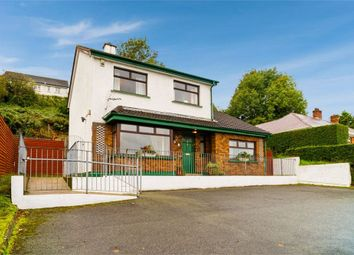 Thumbnail 4 bed detached house for sale in Hospital Road, Newry, County Down