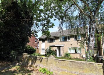 Thumbnail 3 bed semi-detached house to rent in Cowdray Avenue, Colchester