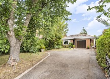 Oxford Road, Dorchester-On-Thames, Wallingford OX10. 4 bed detached bungalow