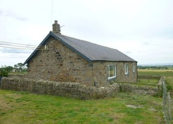 Thumbnail 3 bedroom detached bungalow to rent in South East Farm, Shilbottle, Northumberland
