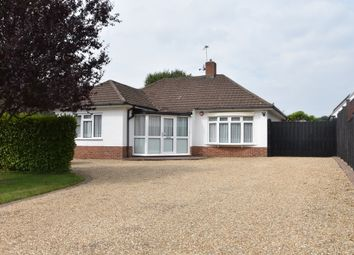 Thumbnail 2 bed detached bungalow to rent in Catherington Lane, Catherington, Waterlooville