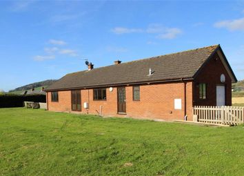 Thumbnail 4 bed bungalow to rent in Llancayo, Usk