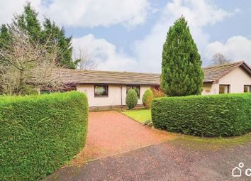 Thumbnail 4 bed bungalow for sale in The Orchard, Woodside, Blairgowrie, Perthshire