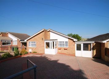 Thumbnail 3 bed detached bungalow for sale in Pine Avenue, Hastings, East Sussex