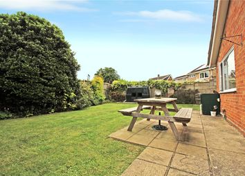 Thumbnail 3 bed detached bungalow for sale in Knyvett Green, Ashwellthorpe, Norwich, Norfolk