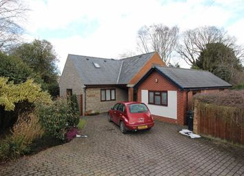 Thumbnail 5 bed detached house for sale in 1A, Clive Place, Severn Road, Welshpool, Powys