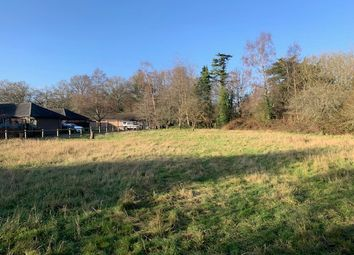 Thumbnail Land for sale in Pale Lane, Winchfield, Hampshire RG27, Winchfield,