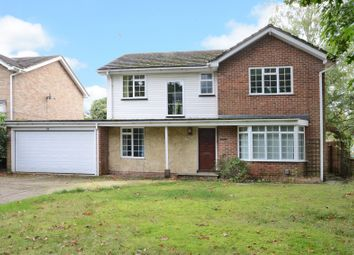 Thumbnail 4 bedroom detached house to rent in The Avenue, Camberley