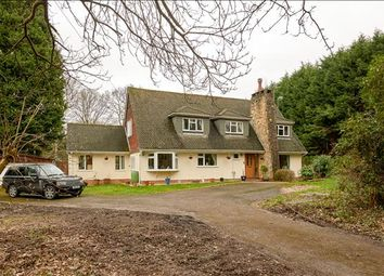 Thumbnail 4 bed detached house for sale in Upper Hammer Lane, Hindhead