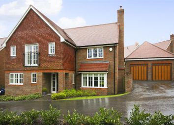 Thumbnail 4 bed detached house to rent in Mantell Drive, Cuckfield, Haywards Heath