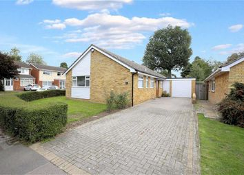 Thumbnail 3 bed detached bungalow for sale in Egg Hall, Epping, Essex
