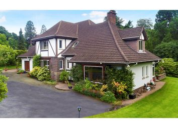 Thumbnail 5 bed detached house for sale in Cedar Lane, Holywood