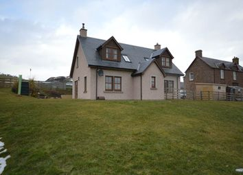 Thumbnail 4 bed detached house to rent in Alyth, Blairgowrie