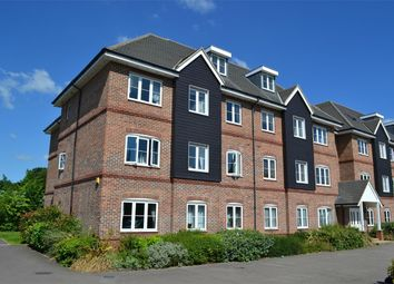 2 bed flat to rent in Cadwell Lane, Hitchin SG4