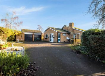 3 bed detached bungalow for sale in The Green, Beeston, Sandy, Bedfordshire SG19