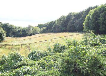 Photo of Wood Lane, Woodcote, Reading RG8