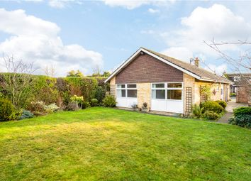 Thumbnail 3 bed detached bungalow to rent in Mallorie Park Drive, Ripon, North Yorkshire