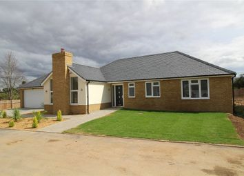 Thumbnail 4 bedroom detached bungalow for sale in Hutton Grange, North Drive, Hutton, Brentwood, Essex