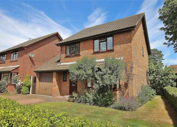 Thumbnail 4 bed detached house for sale in Bisley, Woking, Surrey