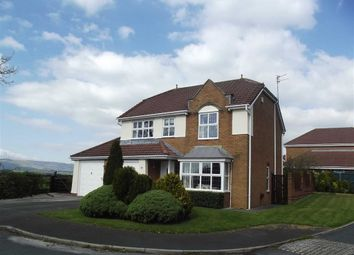 Thumbnail 4 bedroom detached house to rent in Redwood Drive, Longridge, Preston