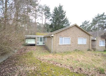 Thumbnail 3 bed detached bungalow for sale in Wadham, Owlsmoor, Sandhurst