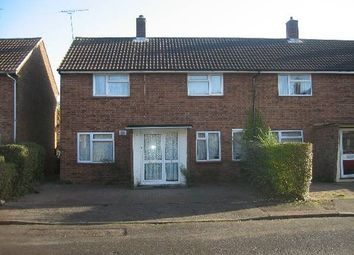 Thumbnail 5 bedroom semi-detached house to rent in Holly Close, Hatfield, Herts
