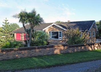 Thumbnail 3 bed detached bungalow for sale in Blackheath, Wenhaston, Halesworth