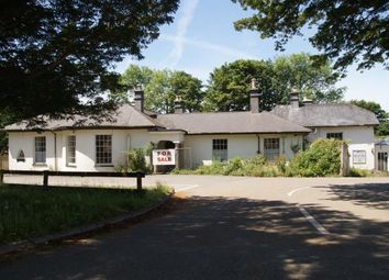 Thumbnail 16 bed bungalow for sale in Camelford, Cornwall