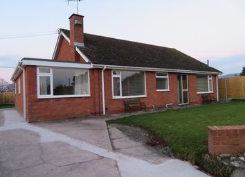 Thumbnail 4 bed bungalow to rent in Canon Pyon, Hereford