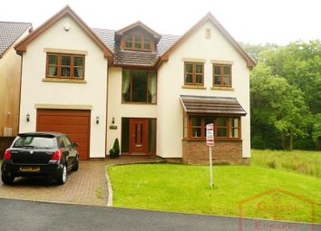 Thumbnail 6 bedroom detached house for sale in Tan Y Coed Varteg Row, Bryn, Port Talbot.