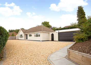 3 bed bungalow for sale in The Verne, Church Crookham, Fleet, Hampshire GU52