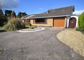 Thumbnail 4 bedroom bungalow for sale in North Lane, Marshchapel, Grimsby