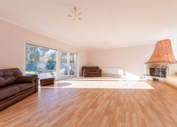 Thumbnail 3 bed detached bungalow for sale in Ashford Road, Newingreen, Hythe