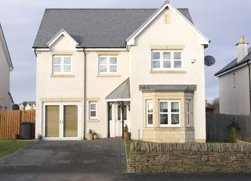 Thumbnail 4 bed detached house to rent in Strathyre Avenue, Broughty Ferry, Dundee