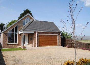 Thumbnail 4 bed bungalow for sale in Marshland St. James, Wisbech, Norfolk