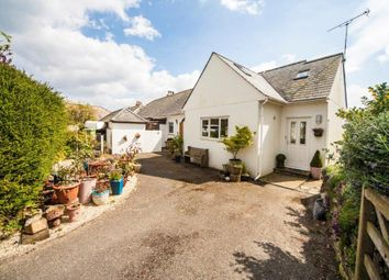 Thumbnail 4 bedroom semi-detached house for sale in Greenhill Villas, Wadebridge