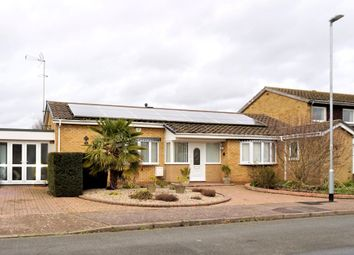 Thumbnail 3 bed detached bungalow for sale in Richardsons Road, East Bergholt, Colchester
