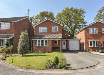 Thumbnail 4 bedroom detached house for sale in Mays Road, Wokingham, Berkshire