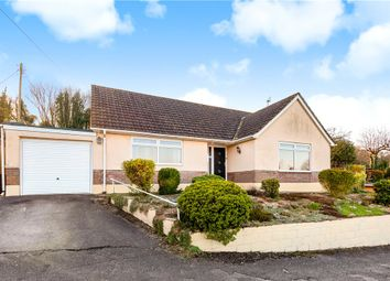 High Street, Spetisbury, Blandford Forum DT11. 2 bed bungalow for sale
