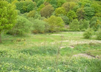 Thumbnail Land for sale in Grazing Land At Daisy Hill, Sacriston, Durham