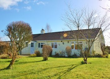 Thumbnail 4 bed bungalow to rent in Liftondown, Lifton
