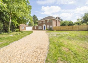 Thumbnail 4 bed detached house to rent in Wingate Lane, Long Sutton, Hook