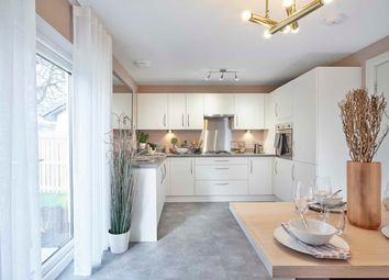 "Thumbnail 4 bed detached house for sale in ""Clemente Garden Room"" at Mey Avenue, Inverness"