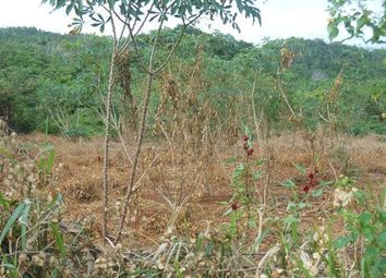Thumbnail Land for sale in Four Paths, Clarendon, Jamaica
