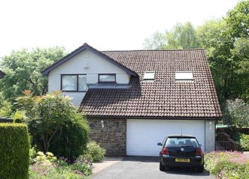 Thumbnail 4 bed detached house for sale in Woodland Park, Ynystawe, Swansea.